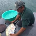 Морская рыбалка на Фукуоке