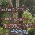 Тайная ферма на Фукуоке - бесплатная экскурсия